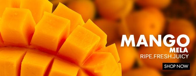 Mango 2014