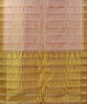 Gadwal Tissue Saree-Apricot and Khaki Color Gadwal Tissue Saree
