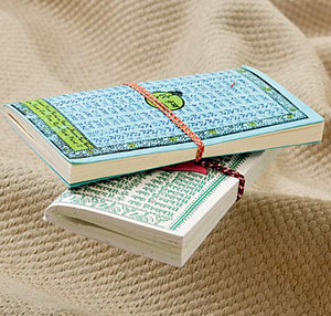 Eco-Friendly Gifts-Recycled Handmade Paper Traveller Diary - Set of Two