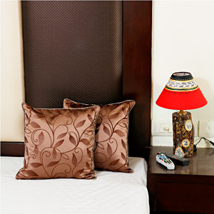 Charming Brown Embroidered Cushions Cover Set