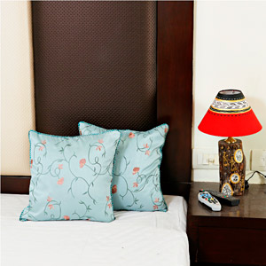 Pastel Shades Dupion Silk Cushion Cover Set