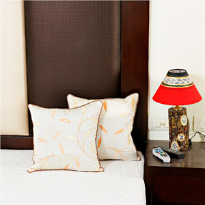 Alice Blue Dupion Silk Cushion Cover Set