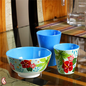Floral Printed Twin Tumbler Set with Bowl