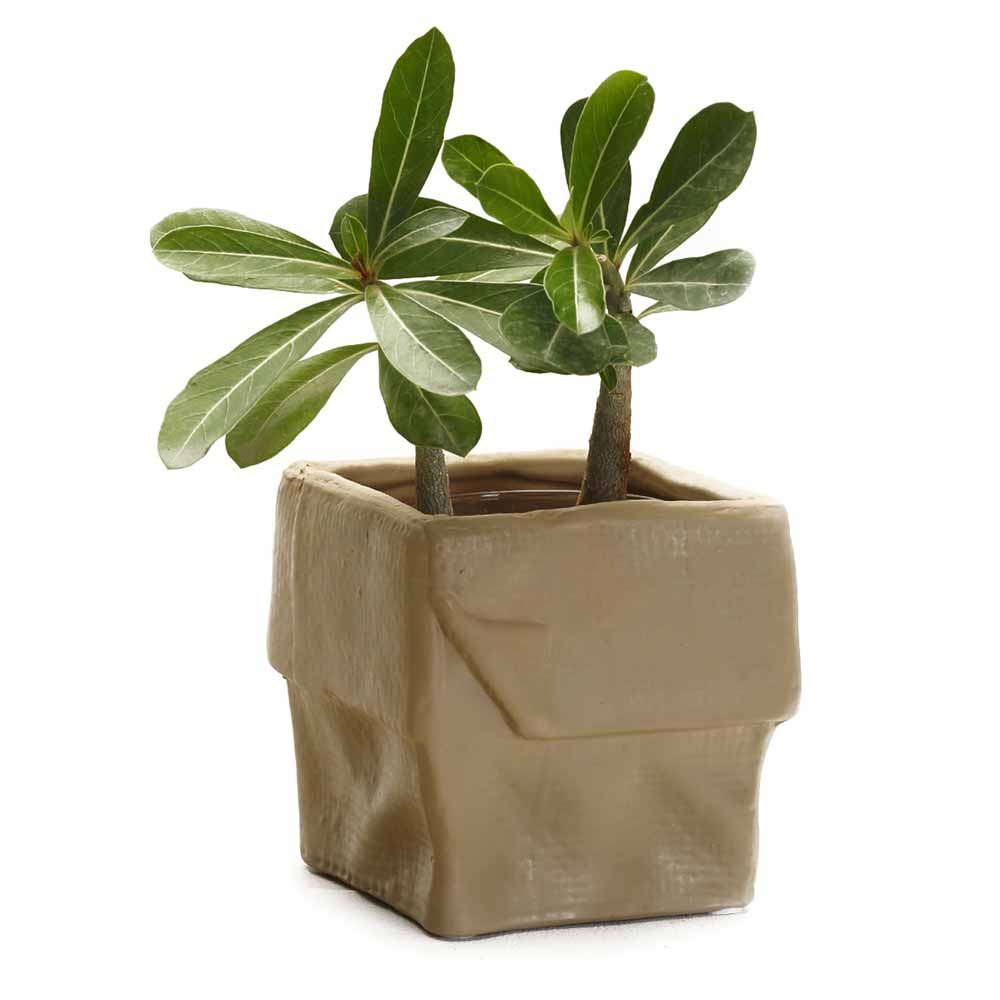 Brown Square Ceramic Planter Pot with a Crumpled look