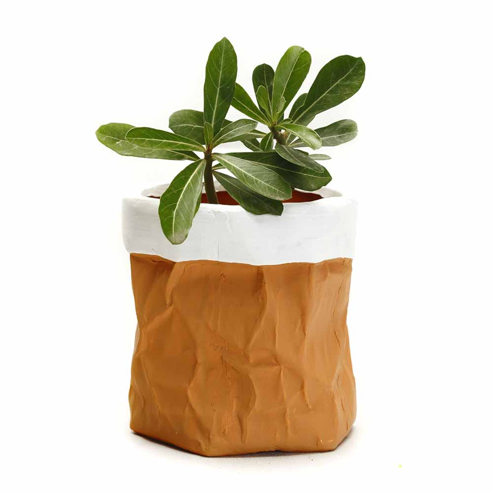 Terracotta Finish Ceramic Planter Pot with a Crumpled look