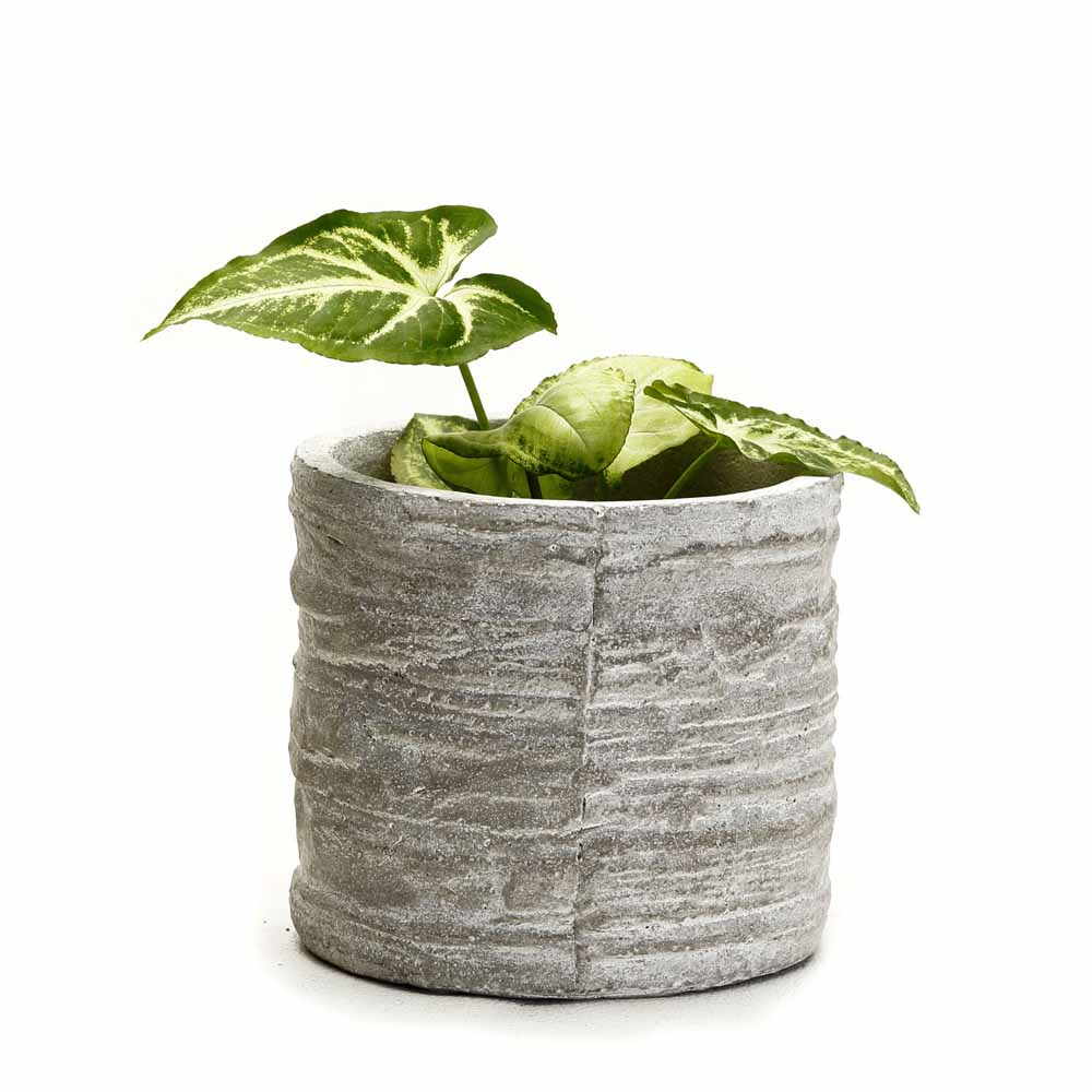 Round Cement Pot with a Rough Finish