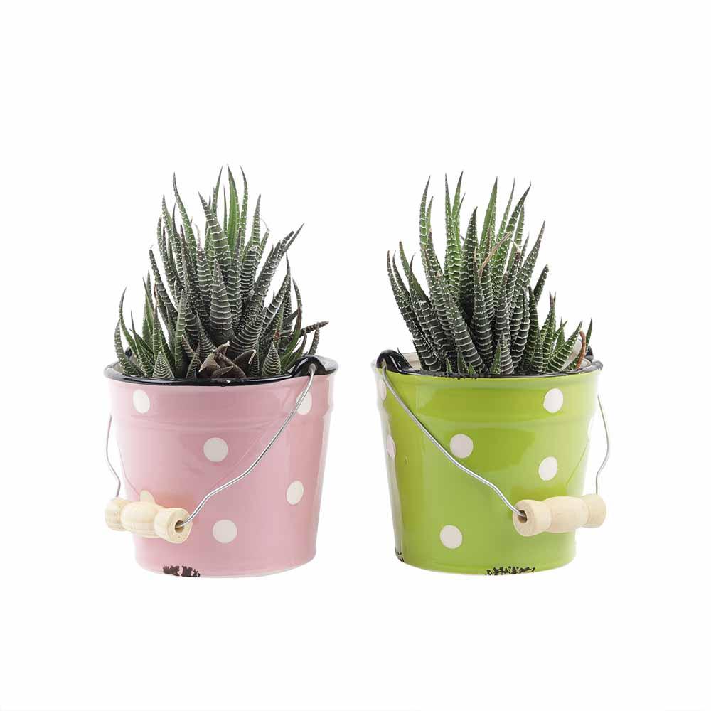 Set of 2 Pink & Green Bucket Style 18 CM Planter Pots