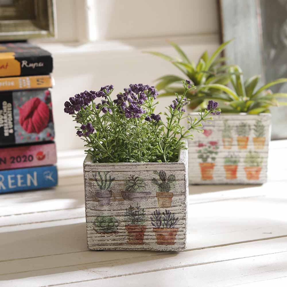Set of 2 Lovely Plant Print 7 CM Planter Pots