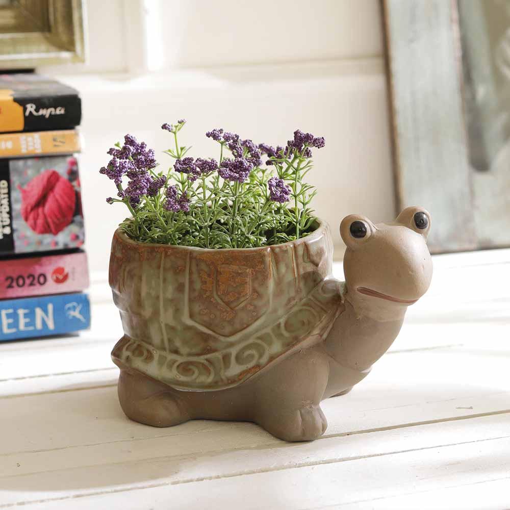 Cute Tortoise Shape 9.5 CM Planter Pot