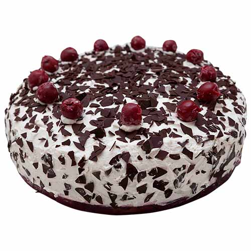 Black Forest Special Cream Cake - Chandigarh Special