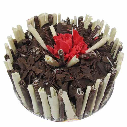 Chocolate Cream Cake - Chandigarh Special