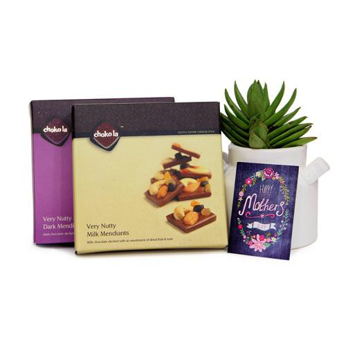 Choco Nutties N Plant