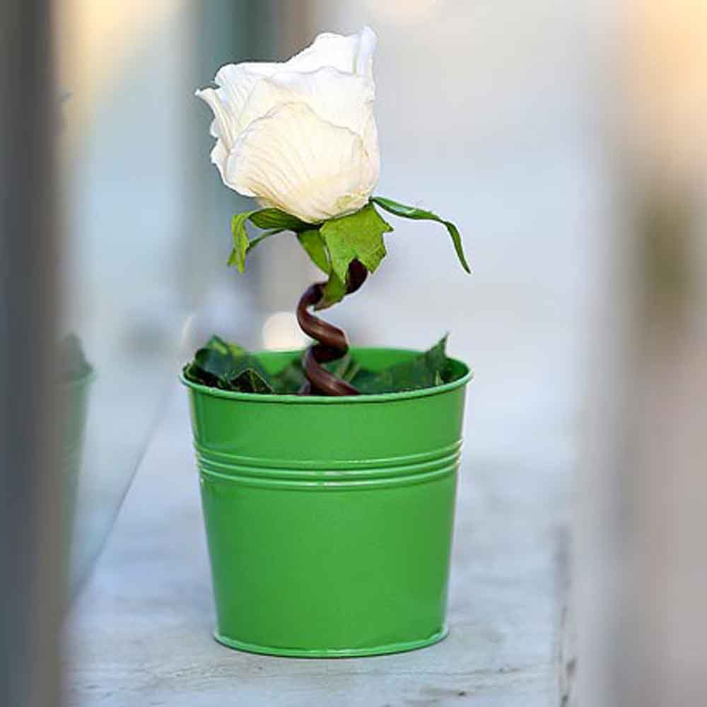 Mothers Day Serene Artificial Rose Plant