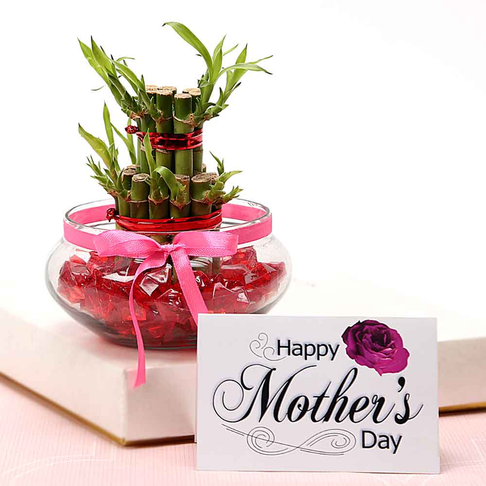 Mothers Day Greet Mommy With Luck