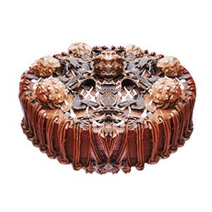 Ferrero Rocher Cake - Delhi Special