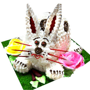 Happy Bunny Celebrations - Indore Special