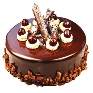 Choco Dreamland Cake - Indore Special