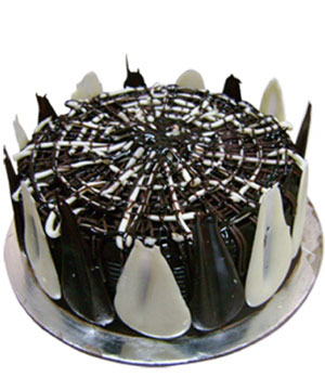 Chocolate Fudge Cake - Delhi & NCR Special