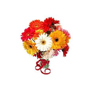 Gerbera Daisies Bouquet