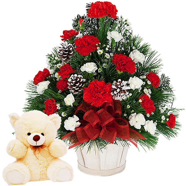 Memories of Love with Carnations N Teddy