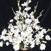 Wreaths & Sympathy Flowers-Sympathy Basket