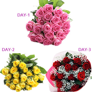 Three Days 20 Roses Serenade