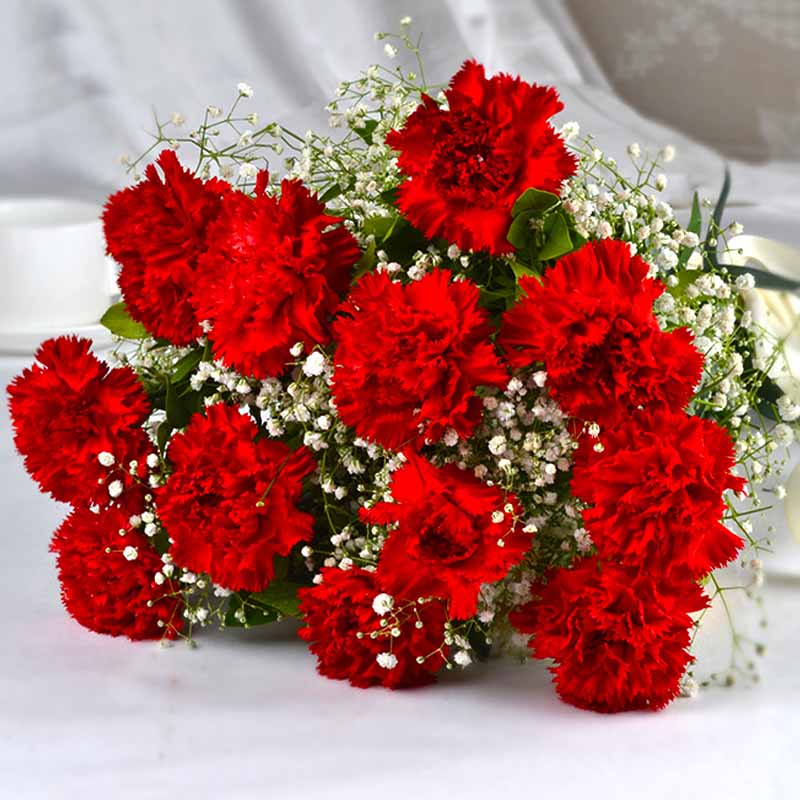 Bouquet of dozen red carnations india