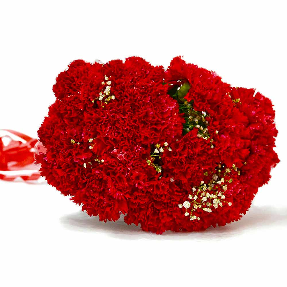 Resplendent Fifteen Red Carnation Bunch