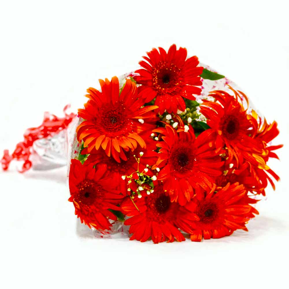 Gerberas-Bunch of Ten Red Gerberas