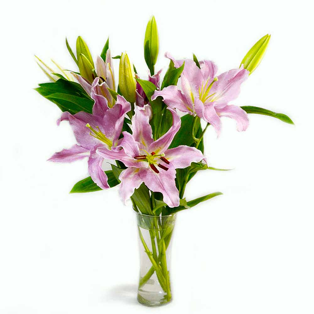 Glass Vase of 6 Stems Lilies