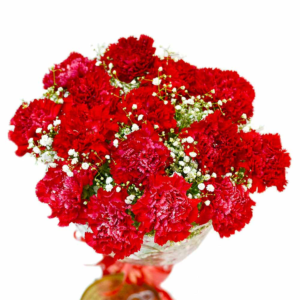 Carnations-Romantic Fifteen Red Carnations Bouquet