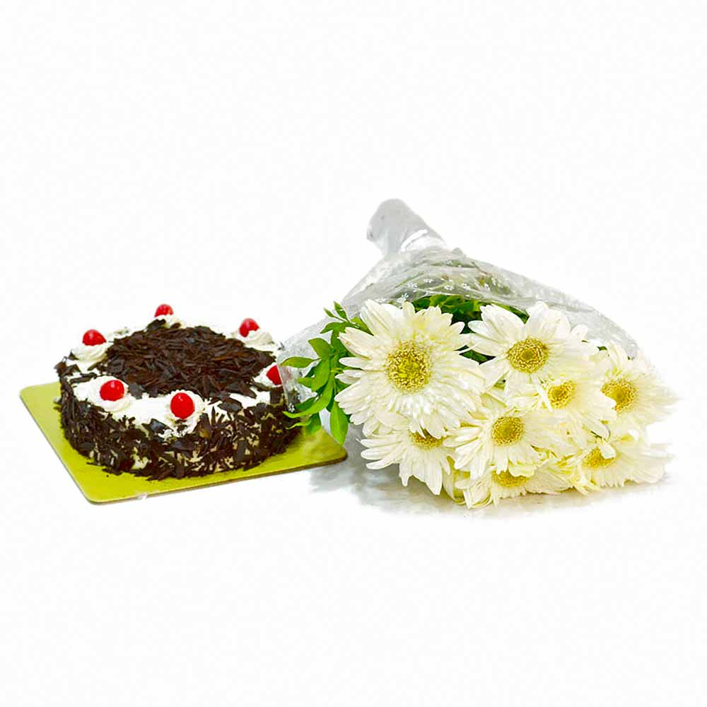 Bunch of 10 White Gerberas with Half Kg Black Forest Cake