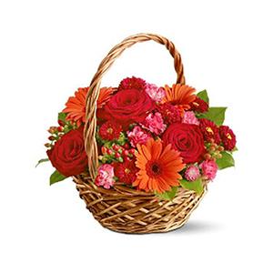 Flower Baskets-Basket of Love