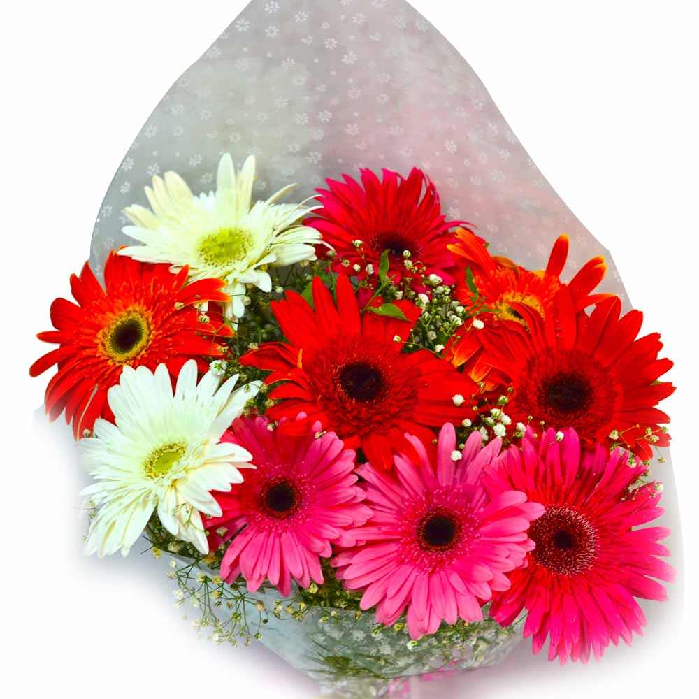 Fresh Mix Gerberas Bouquet