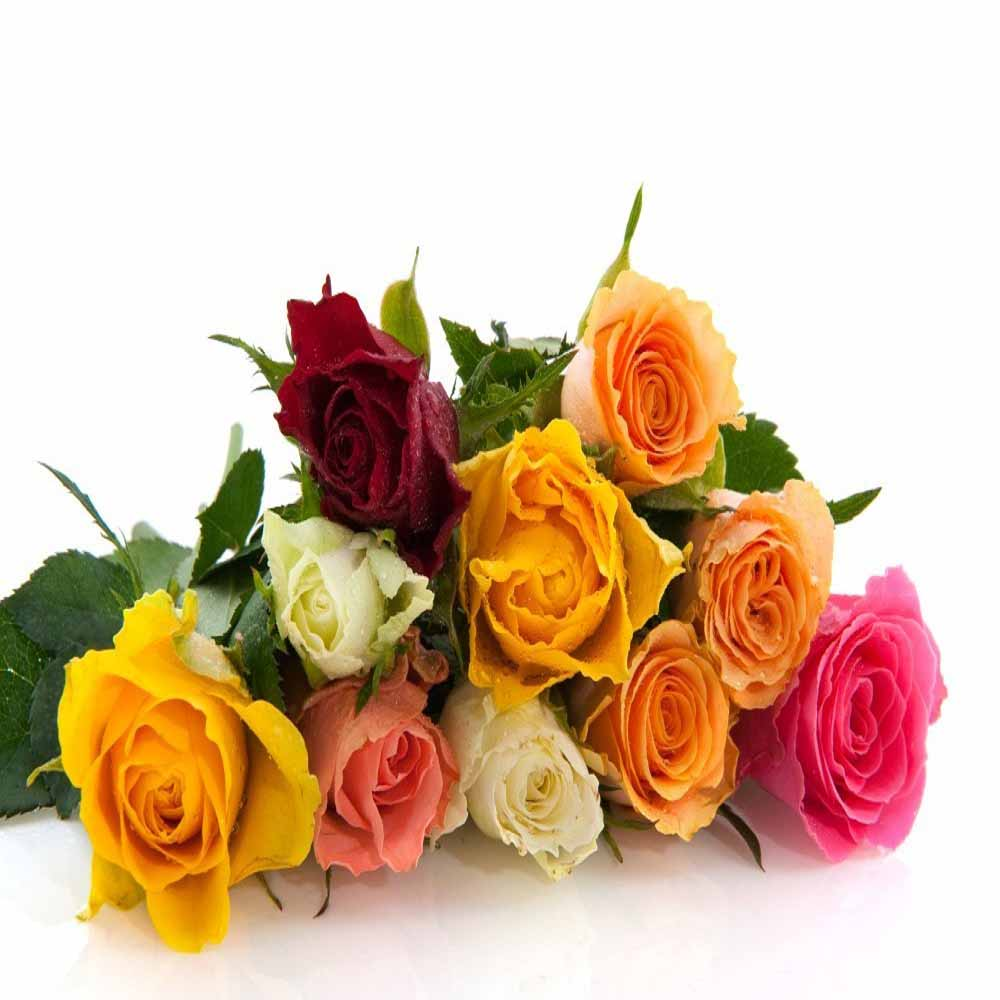Ten Colorful Roses Bouquet