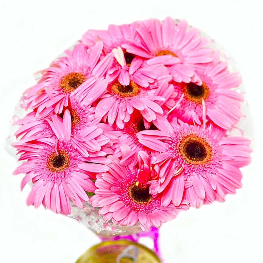 Soft Pink Gerberas Bouquet