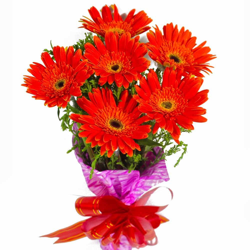 Gerberas-Bouquet of Red Gerberas