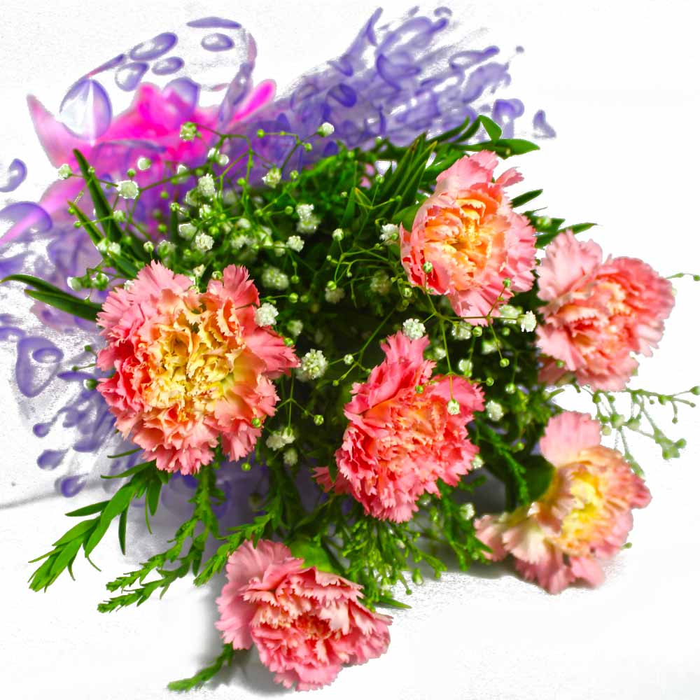 Carnations-Bunch of Six Pink Carnations