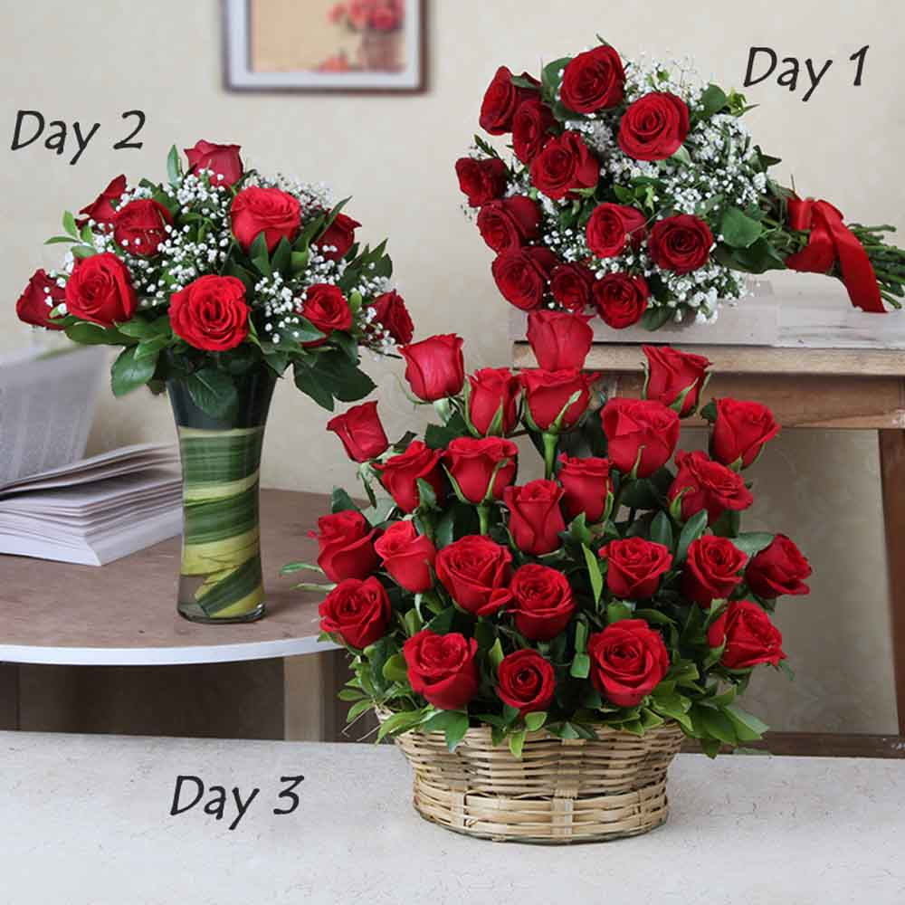 Designer Arrangements-Three Days Surprise Delivery