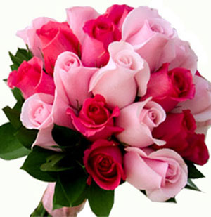 Fresh Flowers Pink Red Roses Posy