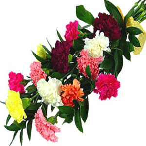 Rainbow Carnations Bouquet India