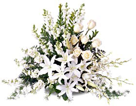 White Tribute