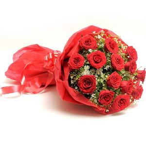 Red Roses-Scarlet Love