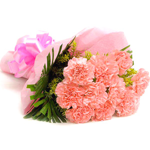 Carnations-Pink Combination