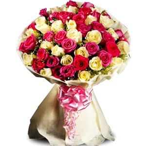 Mix Colored Roses-Elegant Roses