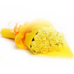 Carnations-Yellow Delight