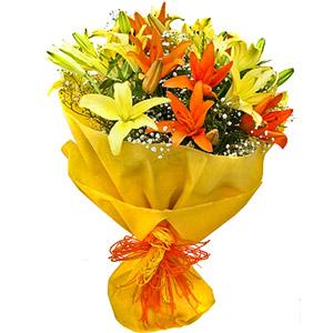 Lilies-Color Me Up