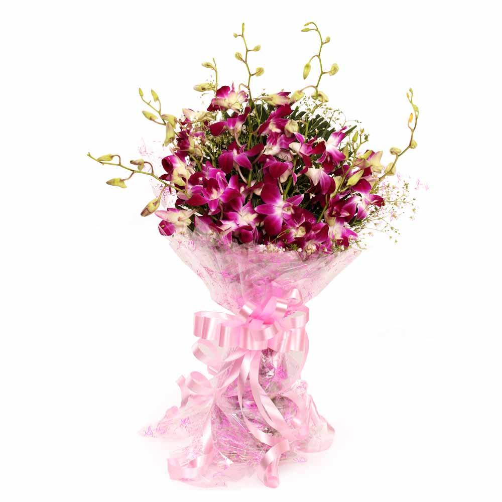 Splendid Purple Orchids