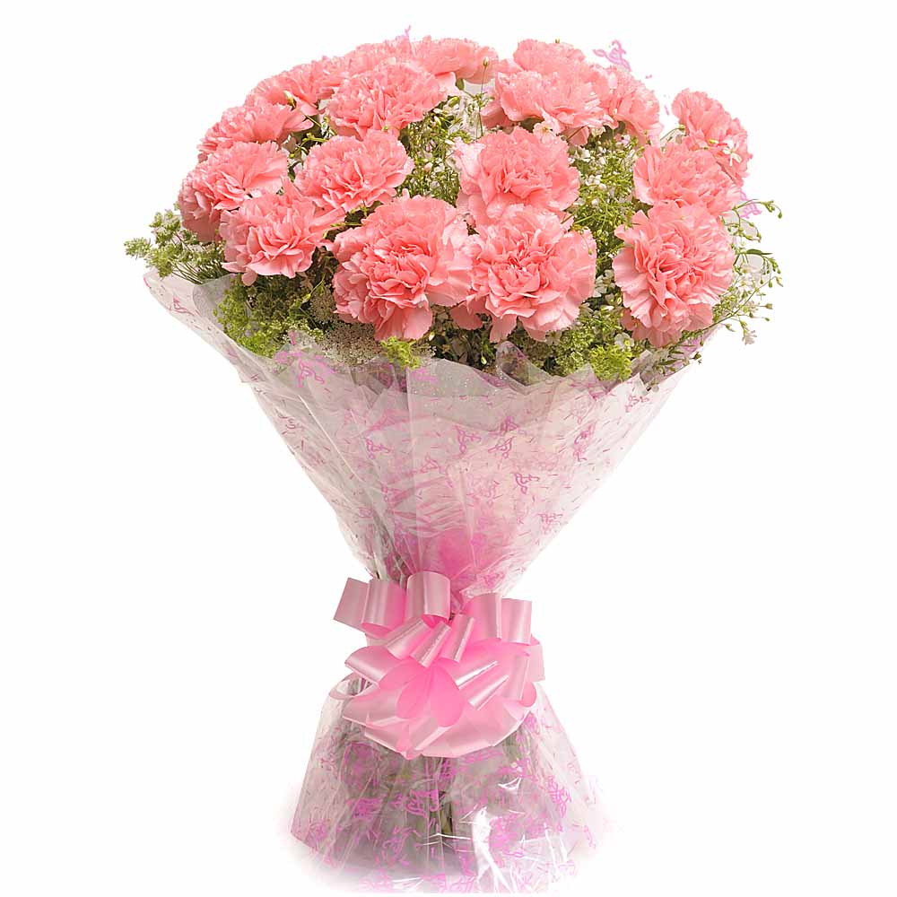 Mothers Day-Carnation Carnival