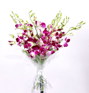 Fresh Flowers-Exotic Orchids